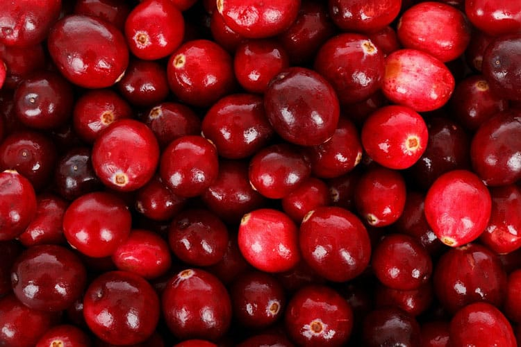 can dogs eat cranberries - all you wanted to know