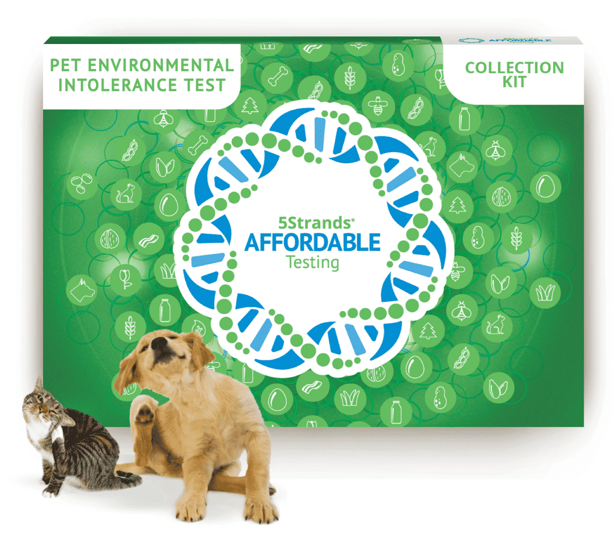 environmental pet test by 5strands