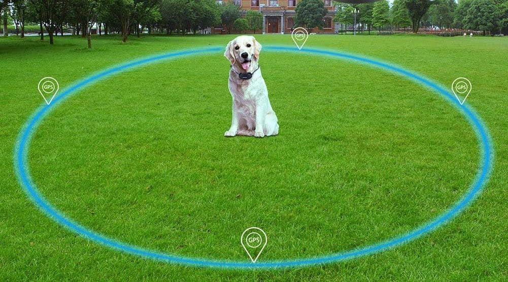 wireless dog fence area of effectiveness